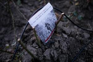 """16 dana 2012 - """"Sećamo ih se!"""""""